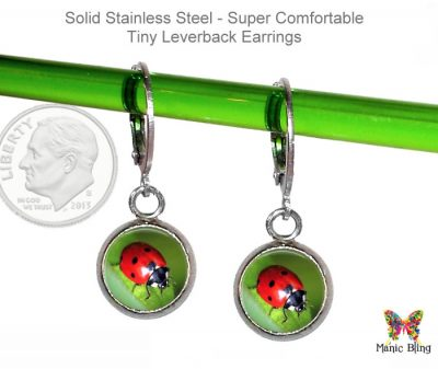 Ladybug Small Leverback Earrings